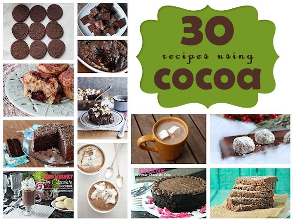 30 Recipes to Help You Celebrate National Cocoa Day