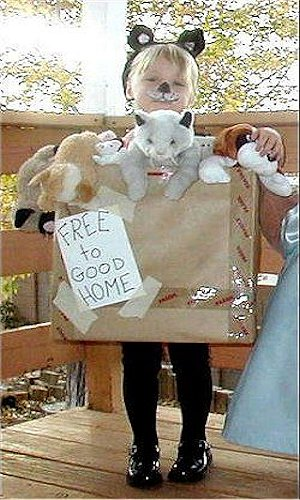 Pets for Sale Costume